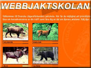 webbjakt_skolan_180