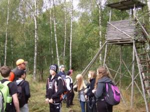Det finns många olika modeller av jakt-torn när Jägarna börjar snickra.