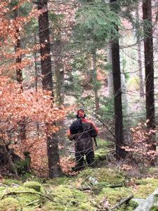 Här passerade ett drevet på för långt håll från Jägaren och räven gick sedan i gryt.