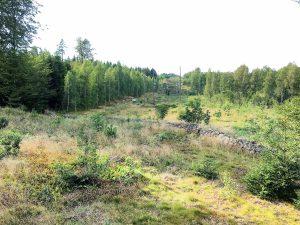 Vy från bockpass på marker tillhörande Olofströms Kommun. Foto Michael Örknér.